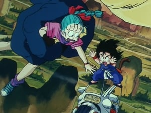 Dragon Ball: 1×1