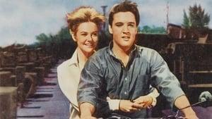Girl Happy (1965)