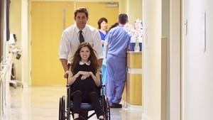 The Hollars Pelicula Completa Online