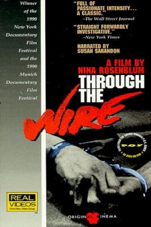 Image Through the Wire