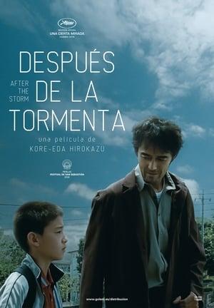 Después de la tormenta (2017)