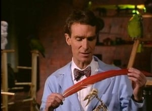 Bill Nye the Science Guy - Birds Wiki Reviews