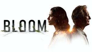 poster Bloom