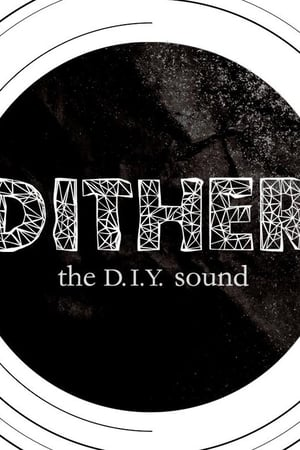 Dither: The D.I.Y. Sound (2013)