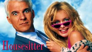 HouseSitter – Simte-te ca acasă 1992