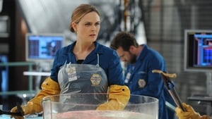 Online Bones Temporada 10 Episodio 8 ver episodio online The Puzzler in the Pit