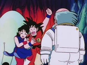 Dragon Ball: 5×28
