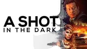 Un tiro en la oscuridad