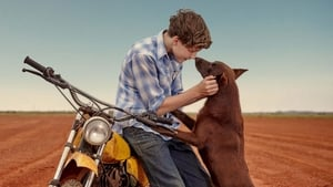 Red Dog: L'inizio (2016)