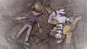 Digimon Adventure: 1×24