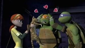 Teenage Mutant Ninja Turtles Season 2 Episode 12