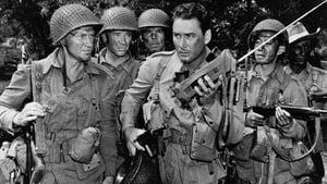 Objective, Burma! (1945)