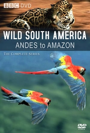 Image Andes to Amazon