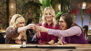 The Big Bang Theory: 11×20