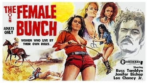 The Female Bunch ( 1971 )