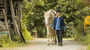 Wendy – Un cavallo per amico
