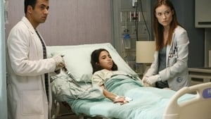Dr House Sezon  5 Odcinek 6 online S05E06