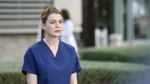 Grey's Anatomy: 10×24