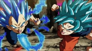 Dragon Ball Super: 1×127