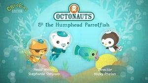 The Octonauts Season 2 Episode 21