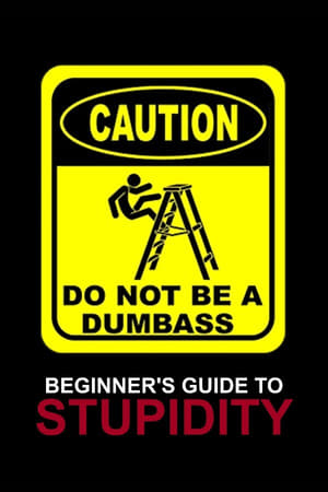 Beginner's Guide To Stupidity