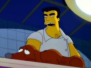 The Simpsons Season 3 :Episode 19  Dog of Death
