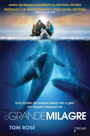 As Palavras Torrent (2012) Dublado BluRay 720p – Download