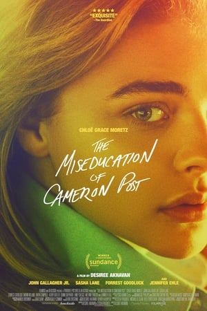 Watch The Miseducation of Cameron Post Full Movie