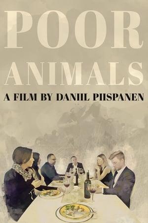 Poor Animals-Kajsa Ernst