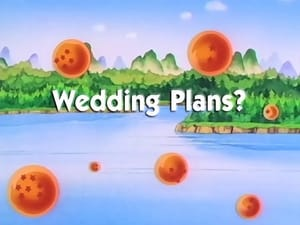 Now you watch episode Wedding Plans? - Dragon Ball