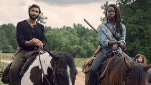 Walking Dead saison 9 episode 8 streaming vf