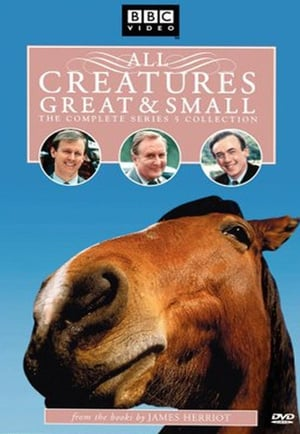 All Creatures Great and Small - Season 5 - Azwaad Movie Database