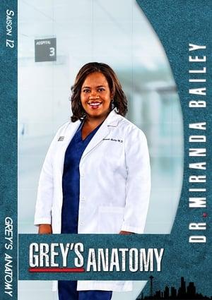 Grey's Anatomy Saison 13 Épisode 8