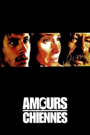 Amours chiennes (2000)