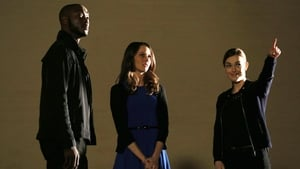 Marvel's Agents of S.H.I.E.L.D.: 1×19