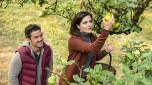 Harvest Love (2017) Online Cały Film CDA