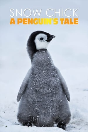 Snow Chick – A Penguin's Tale