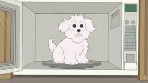 Seth MacFarlane's Cavalcade of Cartoon Comedy Season 1 Episode 50