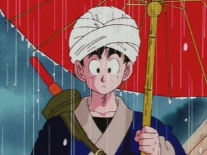 Dragon Ball Season 1 :Episode 133  The Reunion Before the Storm