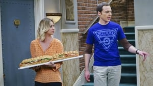 Episodio HD Online The Big Bang Theory Temporada 9 E21 La combustión de la fiesta televisiva
