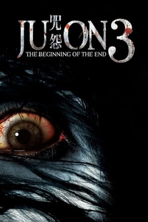 Watch Ju-on: The Beginning of the End Online