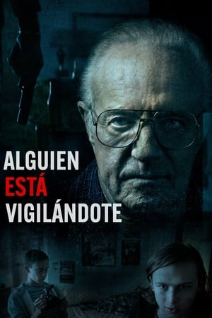 Alguien está vigilándote / The Waiting (2016)