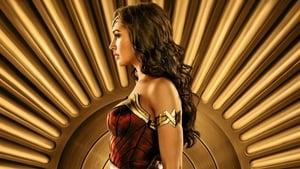 Descargar La Mujer Maravilla (2017) (MEGA HD 1 Link)