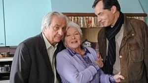 Portuguese movie from 2012: Petits arrangements avec ma mère