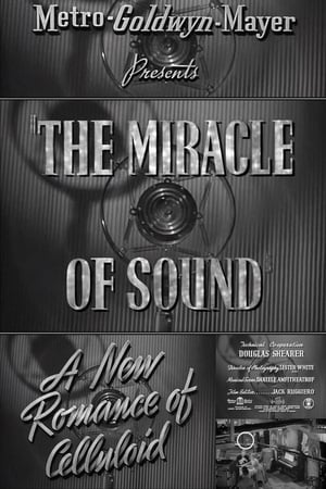 A New Romance of Celluloid: The Miracle of Sound