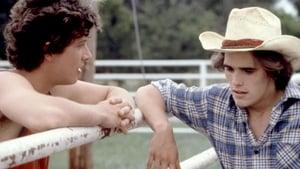 Un ragazzo chiamato Tex 1982 Streaming Altadefinizione