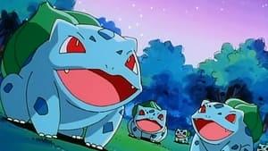 Pokémon Season 1 :Episode 51  Bulbasaur's Mysterious Garden