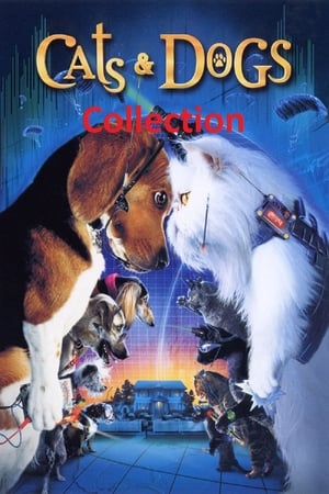 Assistir Cats & Dogs Collection Coleção Online Grátis HD Legendado e Dublado