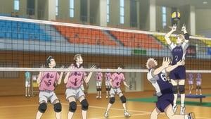 2.43 Seiin Koukou Danshi Volley-bu: 1×2
