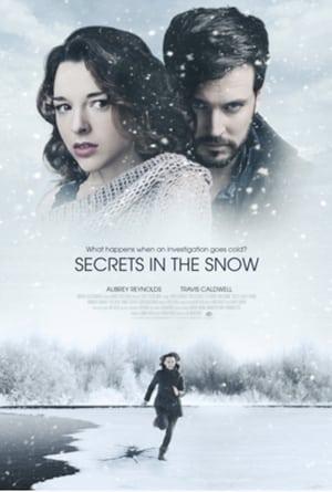 Killer Secrets in the Snow (2020)